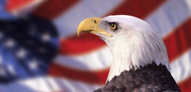 За что мы ненавидим Америку?