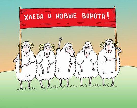 Рассказ Анны Радченко