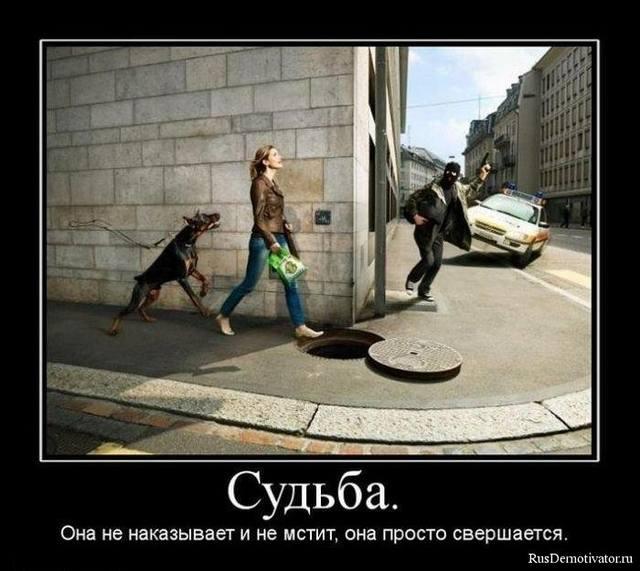 рассказ, Анна Радченко